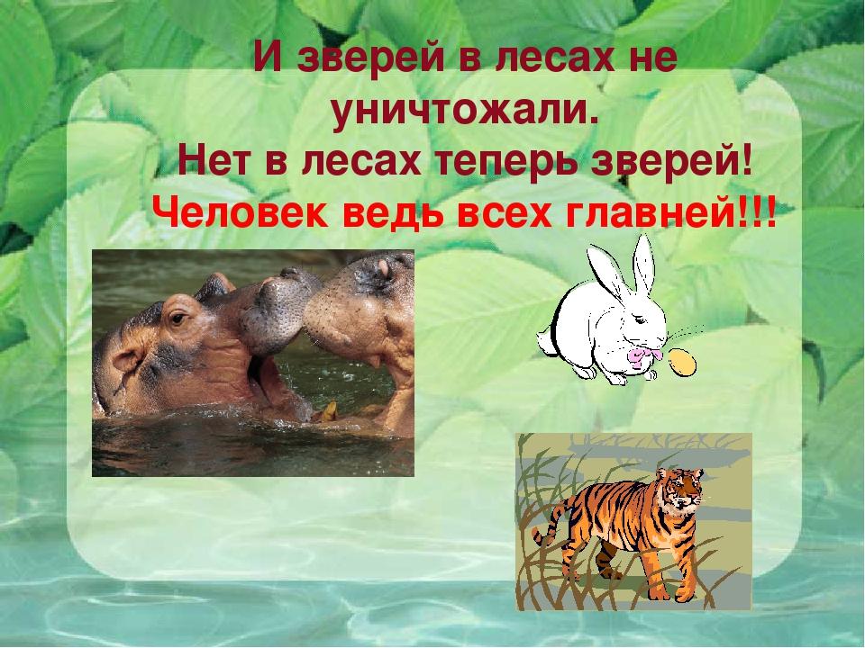 И зверей в лесах не уничтожали. Нет в лесах теперь зверей! Человек ведь всех...