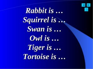 Rabbit is … Squirrel is … Swan is … Owl is … Tiger is … Tortoise is …