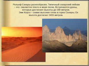 Рельеф Сахары разнообразен. Типичный сахарский пейзаж – это скалистое плато