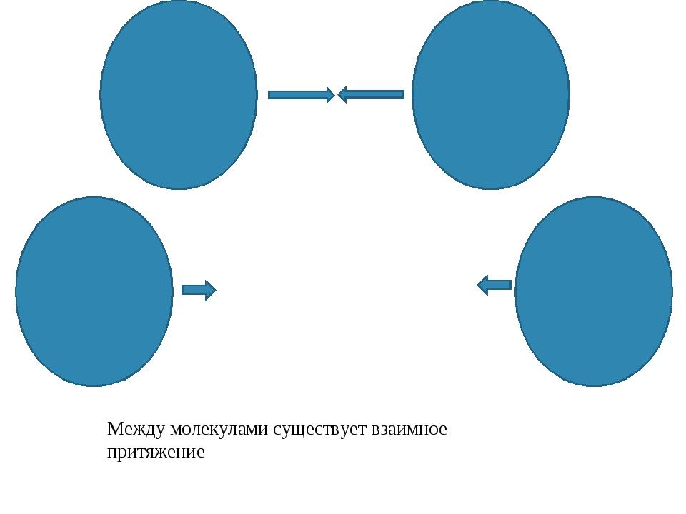 Между молекулами существует взаимное притяжение