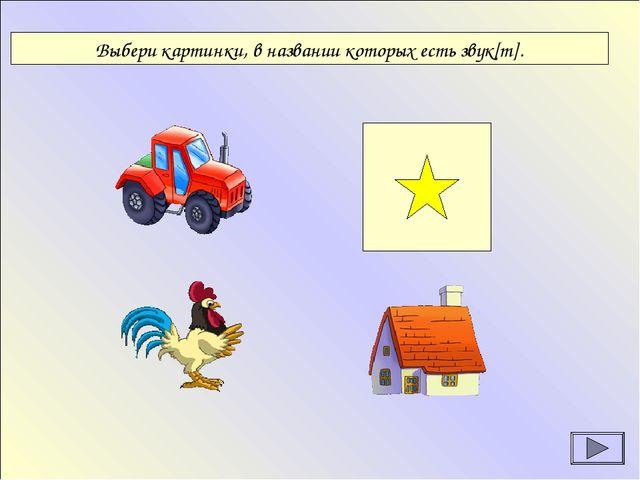 Выбери картинки, в названии которых есть звук[т].