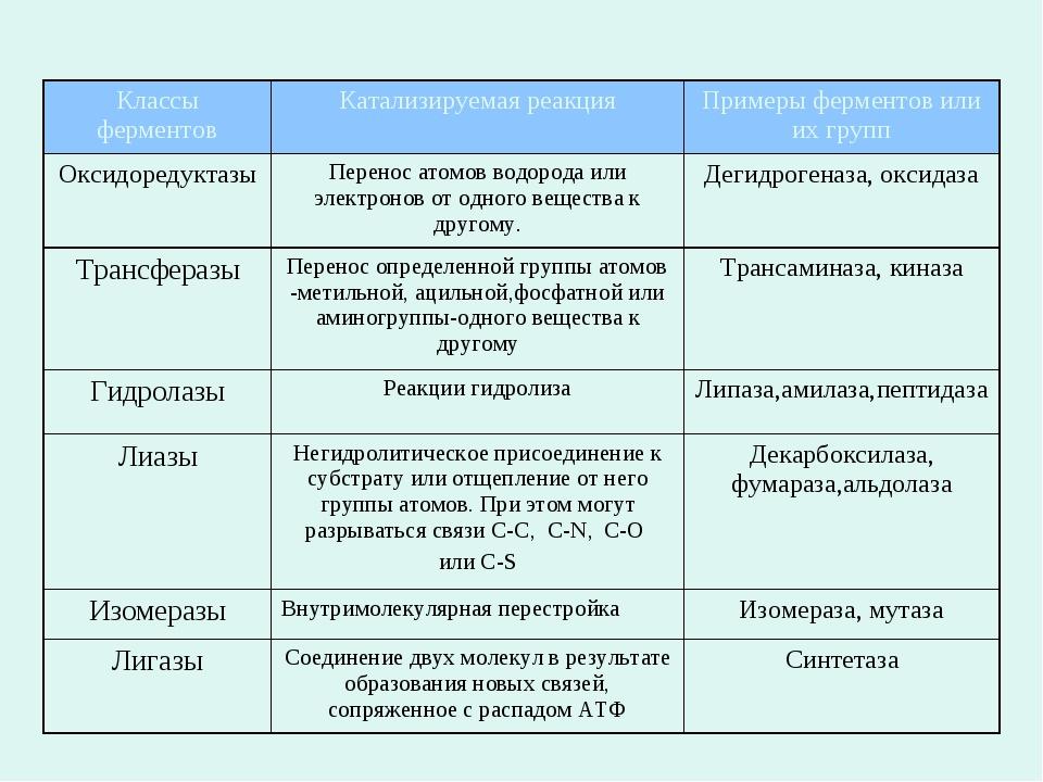 Классификация ферментов Классы ферментовКатализируемая реакцияПримеры ферме...