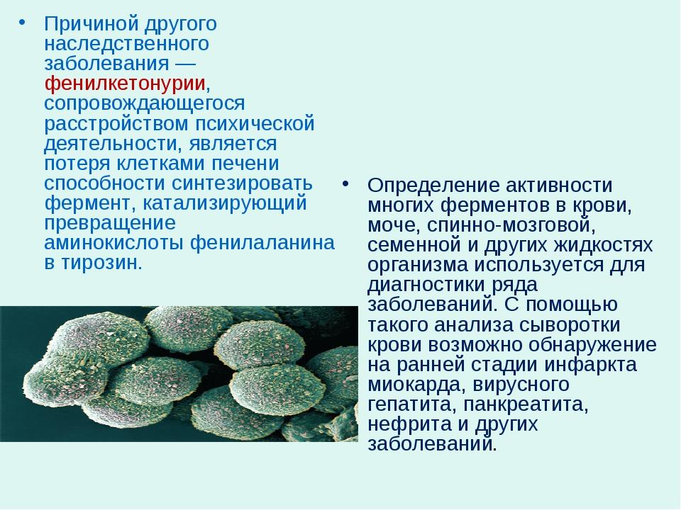 Причиной другого наследственного заболевания — фенилкетонурии, сопровождающег...