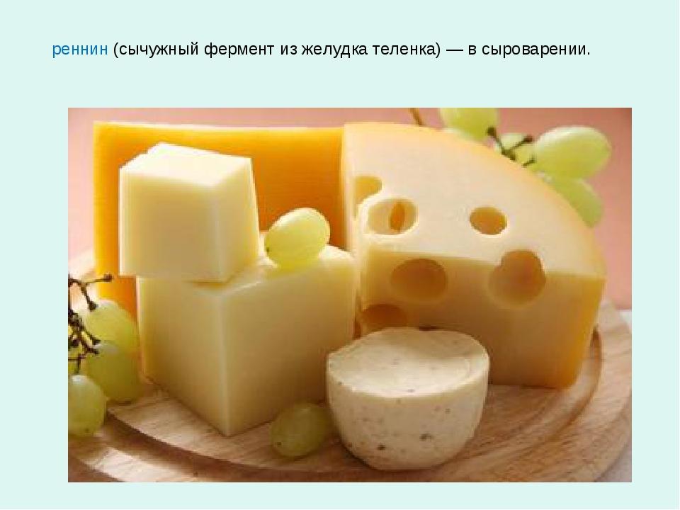 реннин (сычужный фермент из желудка теленка) — в сыроварении.