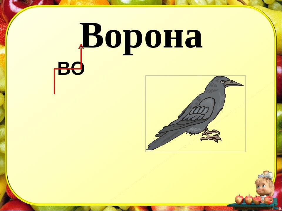 Ворона ВО