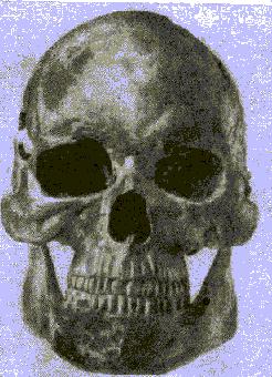 hello_html_m4cf593cc.png