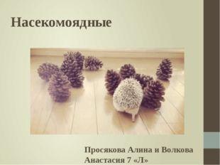 Насекомоядные Просякова Алина и Волкова Анастасия 7 «Л»