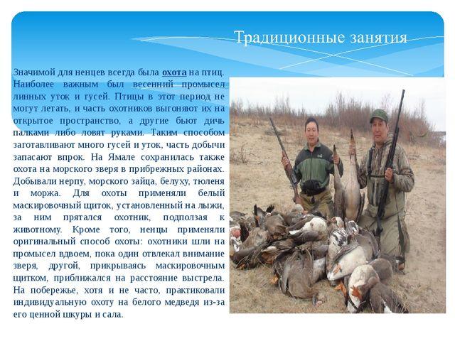 Значимой для ненцев всегда была охота на птиц. Наиболее важным был весенний п...