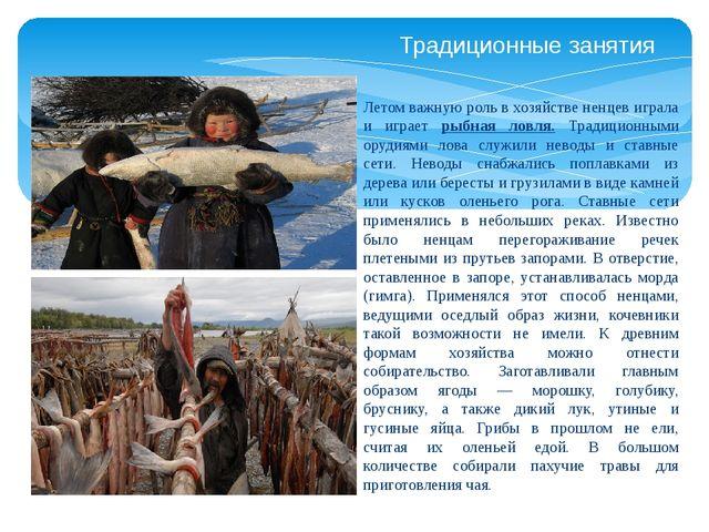 Традиционные занятия Летом важную роль в хозяйстве ненцев играла и играет рыб...