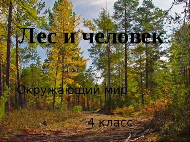 Лес и человек Окружающий мир 4 класс 4 класс