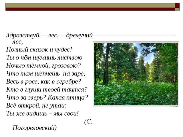 Здравствуй, лес, дремучий лес, Полный сказок и чудес! Ты о чём шумишь листвою...