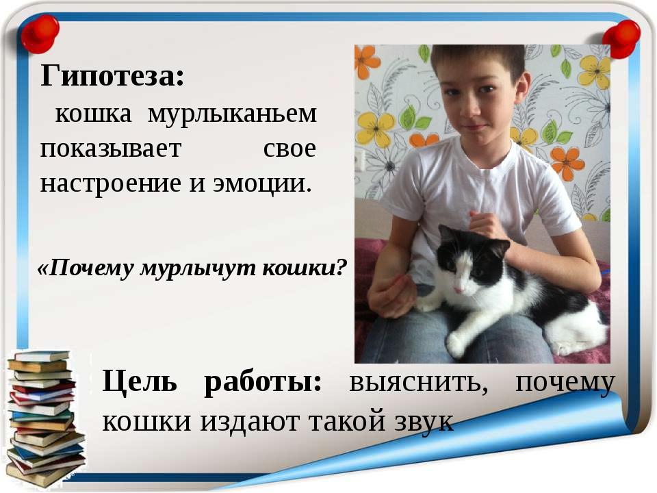 Гипотеза: кошка мурлыканьем показывает свое настроение и эмоции. Цель работы:...
