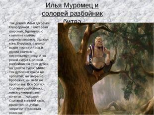 Илья Муромец и соловей разбойник битва Так дошел Илья до речки Смородиной. Те