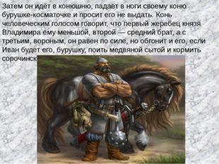 Затем он идёт в конюшню, падает в ноги своему коню бурушке-косматочке и проси