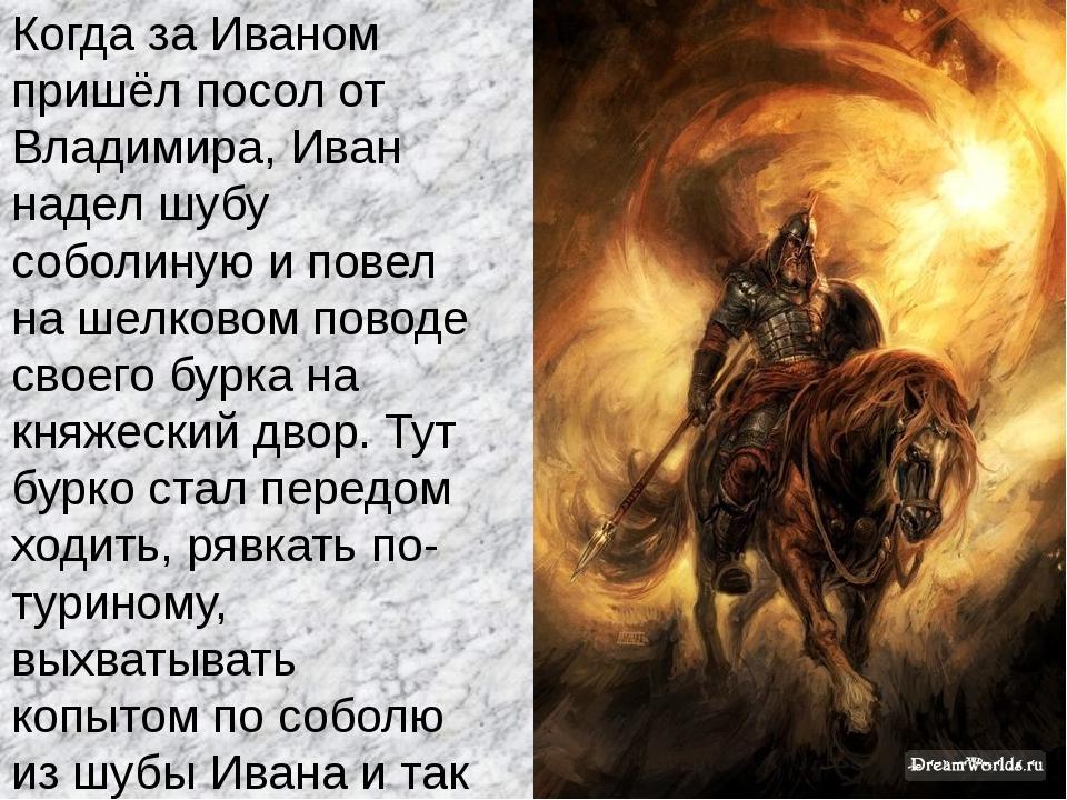 Когда за Иваном пришёл посол от Владимира, Иван надел шубу соболиную и повел...