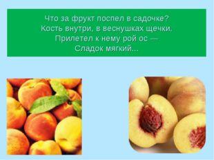 Что за фрукт поспел в садочке? Кость внутри, в веснушках щечки. Прилетел к не