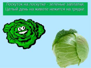 Лоскуток на лоскутке - зеленые заплатки, Целый день на животе нежится на гряд