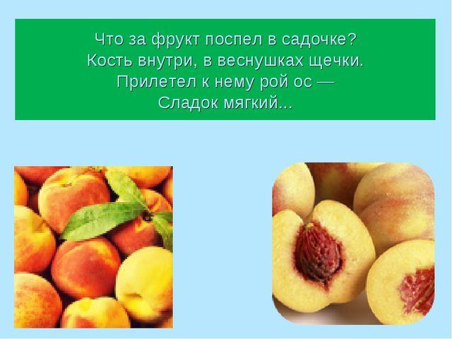 Что за фрукт поспел в садочке? Кость внутри, в веснушках щечки. Прилетел к не...
