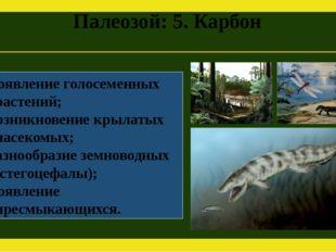 Палеозой: 5. Карбон Появление голосеменных растений; Возникновение крылатых н