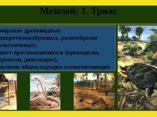 Мезозой: 1. Триас Вымирание древовидных папоротникообразных, разнообразие гол