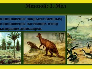 Мезозой: 3. Мел Возникновение покрытосеменных; Возникновение настоящих птиц;
