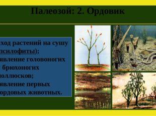 Палеозой: 2. Ордовик Выход растений на сушу (псилофиты); Появление головоноги