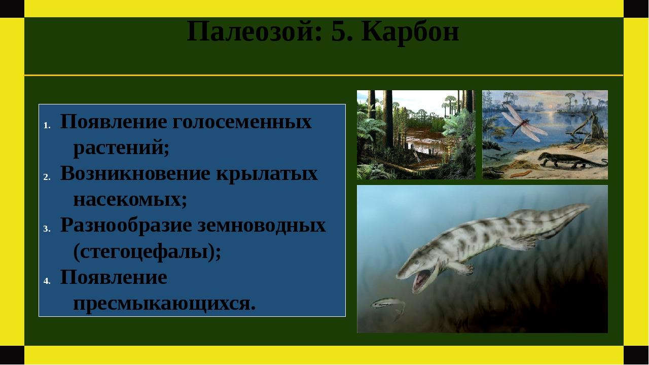 Палеозой: 5. Карбон Появление голосеменных растений; Возникновение крылатых н...