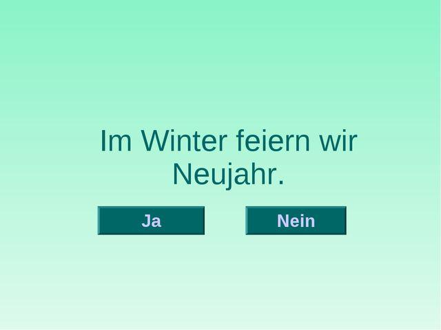 Im Winter feiern wir Neujahr. Nein Ja