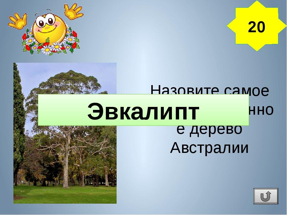 Интернет ресурсы: Занимательная география в вопросах и ответах. Ямковой Витал...
