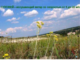 СУХОВЕЙ—иссушающий ветер со скоростью от 5 до 20 м/с