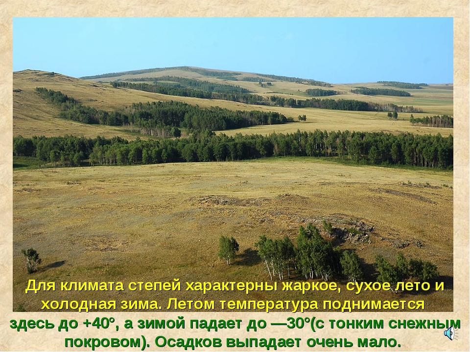 Для климата степей характерны жаркое, сухое лето и холодная зима. Летом темпе...