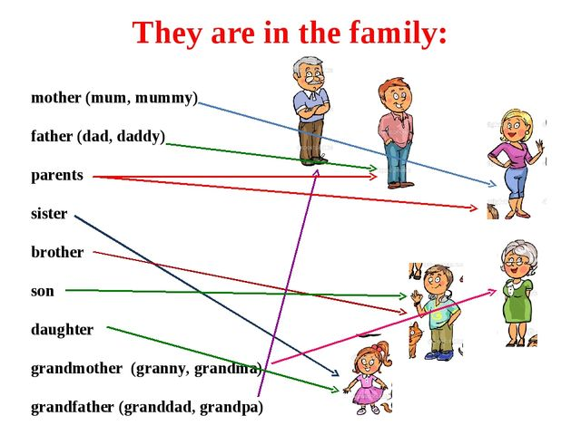 They are in the family: mother (mum, mummy) father (dad, daddy) parents siste...