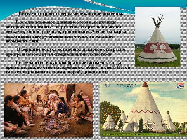 Вигвамы строят североамериканские индейцы. В землю втыкают длинные жерди, ве...