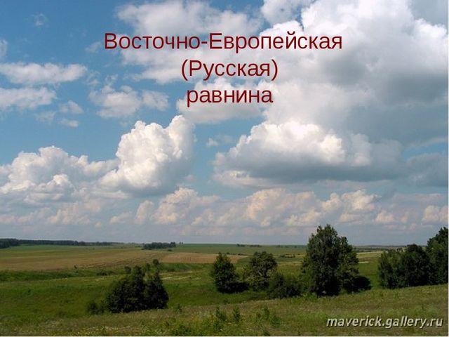 Восточно-Европейская (Русская) равнина