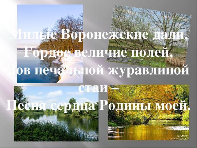 Милые Воронежские дали, Гордое величие полей, Зов печальной журавлиной стаи...