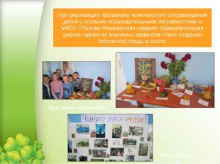 При реализации программы комплексного сопровождения детей с особыми образоват