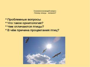 Основополагающий вопрос: Почему птицы летают? * Проблемные вопросы * Что тако