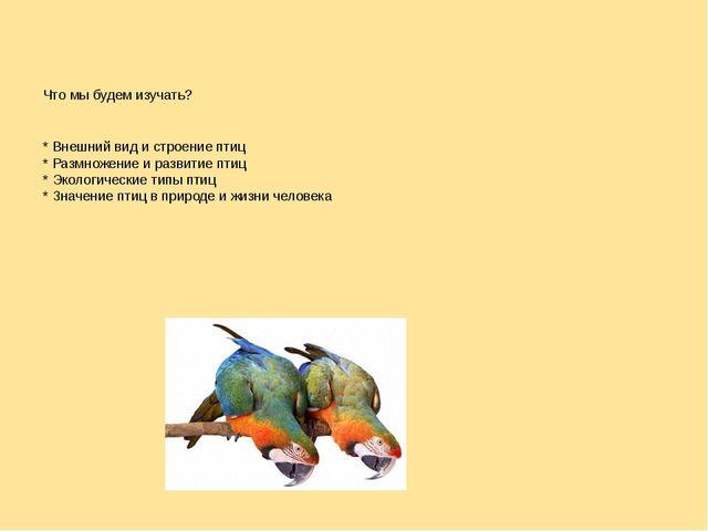 Что мы будем изучать? * Внешний вид и строение птиц * Размножение и развитие...