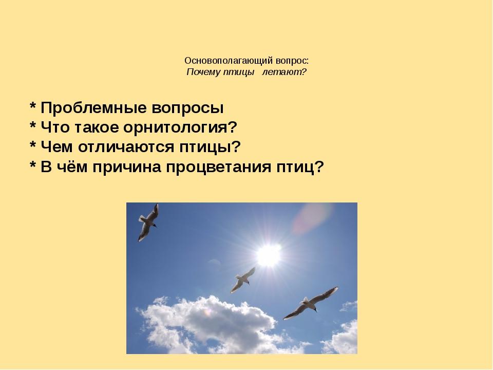 Основополагающий вопрос: Почему птицы летают? * Проблемные вопросы * Что тако...