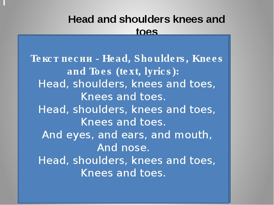 Видео коровы Head and shoulders knees and toes Текст песни - Head, Shoulders,...