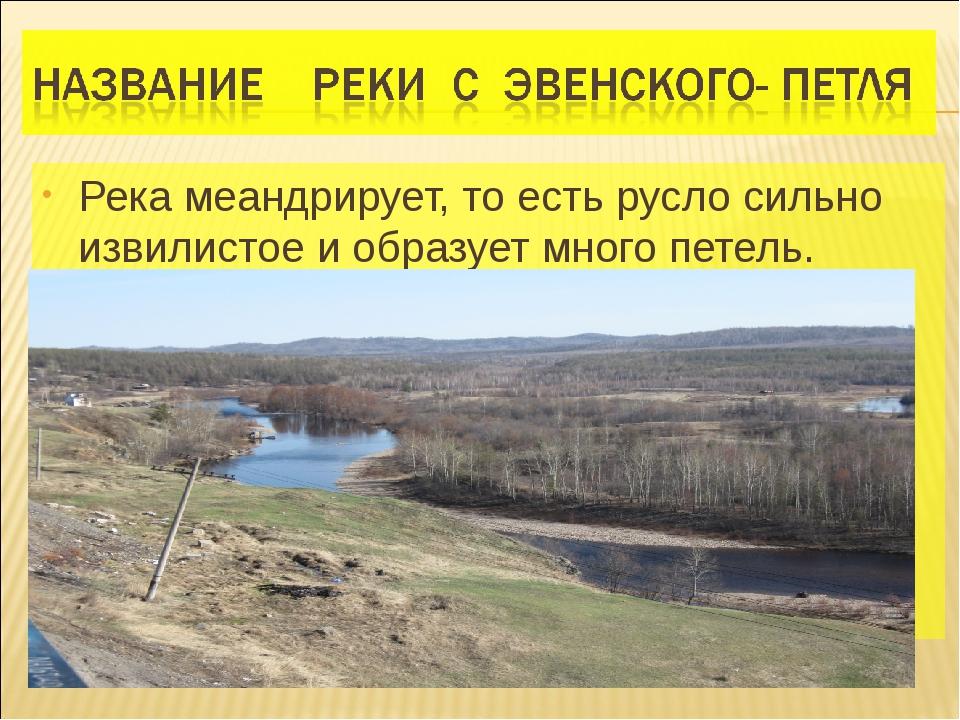 Река меандрирует, то есть русло сильно извилистое и образует много петель.