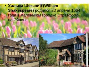 Уильям Шекспир (William Shakespeare)родился 23 апреля 1564 года в маленьком