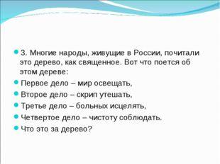 3. Многие народы, живущие в России, почитали это дерево, как священное. Вот ч