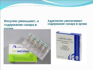 Инсулин уменьшает, а содержание сахара в крови Адреналин увеличивает содержан