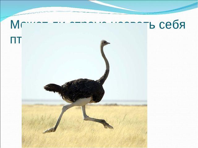 Может ли страус назвать себя птицей?