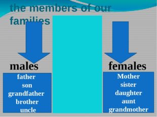 the members of our families females males Mother sister daughter aunt grandmo