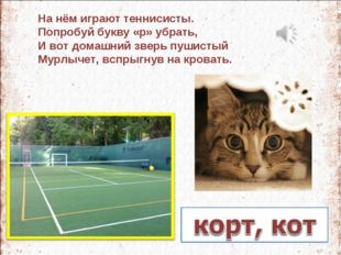 На нём играют теннисисты. Попробуй букву «р» убрать, И вот домашний зверь пуш