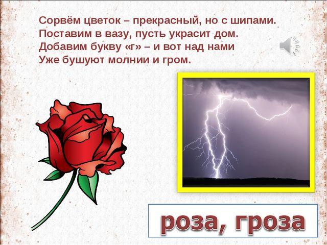 Сорвём цветок – прекрасный, но с шипами. Поставим в вазу, пусть украсит дом....