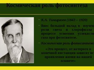 Космическая роль фотосинтеза К.А. Тимирязев (1843 – 1920) Внес большой вклад