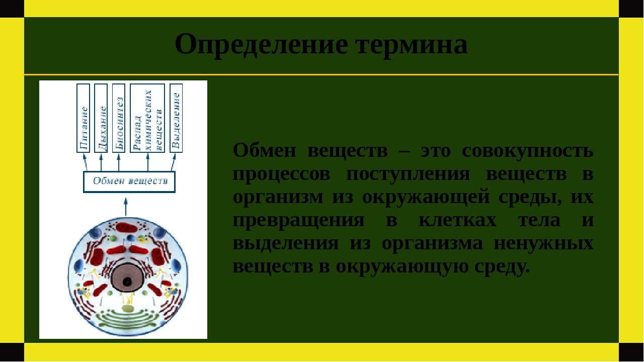 Обмен веществ – это совокупность процессов поступления веществ в организм из...